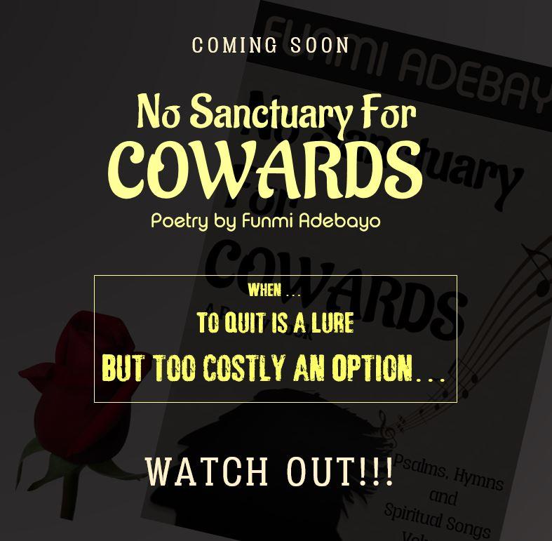 No Sanctuary Fliers2